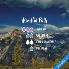 Mindful Path - Essential Oil Diffuser Blend