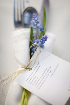 grape hyacinth wrap