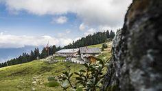 #herbst #wandern #vigiljoch #visitlana #southtyrol #südtirol #meranerland #holidays