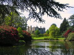 Sheffield Park, East Sussex, England, UK - I love going on family walks around its grounds Travel Around The World, Around The Worlds, Sheffield Park, Park Homes, East Sussex, Days Out, Norfolk, Day Trip, Great Britain