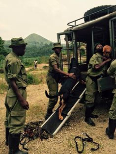 Congohounds. Virunga National Park African Jungle, Picture Boards, Congo, Vignettes, Police, National Parks, Novels, Passion, Romantic