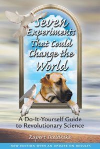 Buy Seven Experiments That Could Change the World: A Do-It-Yourself Guide to Revolutionary Science by Rupert Sheldrake and Read this Book on Kobo's Free Apps. Discover Kobo's Vast Collection of Ebooks and Audiobooks Today - Over 4 Million Titles! Rupert Sheldrake, Do It Yourself Magazine, Do It Yourself Wedding, Most Popular Books, Paperback Books, Revolutionaries, Change The World, Nonfiction, Audio Books