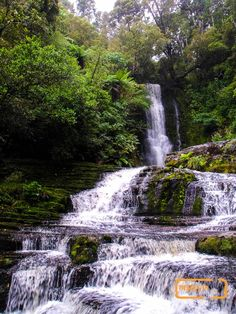 Waterfall in Catlins