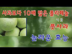 풋사과, 놀라운 효능 - YouTube