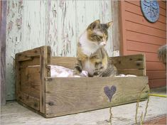diy pallet idea Home Ideas , DIY Wood Pallet Creative Furniture Idea : Cat Bed . what if I used old dresser drawers? Pallet Crates, Pallet Beds, Old Pallets, Wooden Pallets, Diy Pallet, Pallet Wood, Free Pallets, Wine Crates, Wooden Boxes