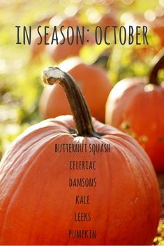 Enjoy fruit and vegetables at their best and save money by eating seasonally. Here's what's in season in October.