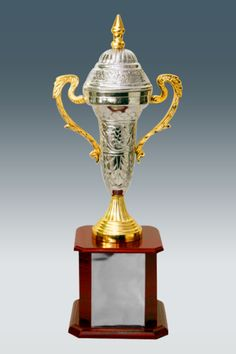 Metallic Sports Trophy With Artistic Engraving GK 558