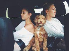 Hill Taylor Taylor Marie Hill, Victoria Secret Angels, Look Alike, Autumn Fashion, Beautiful, Victoria's Secret, Instagram Fashion, Kiss, Movie
