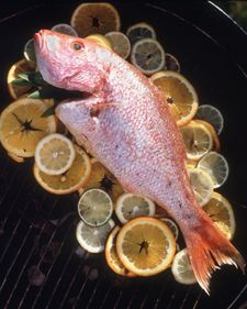 Citrus Grilled Fish - Martha Stewart Food.... I put salmon fillets over the bed of citrus on the grill and topped the fillets with herbed butter infused with garlic, cilantro, pepper, citrus zest and orange juice. Grilled on indirect heat for 15 minutes. No need to turn fillets, they retain a beautiful salmon color....The BEST!!!!