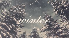 Winter snow gifs gif christmas merry christmas christmas pictures happy holidays merry xmas