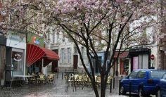 Valenciennes - Place St Nicolas in spring_ France