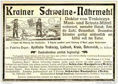 Original-Werbung/ Anzeige 1903 - KRAINER SCHWEINE NÄHRMEHL DR. TRNKÓCZYS…