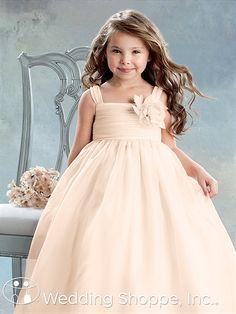 Adorable flower girl dress Jordan L394