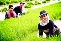 Happy Planting :)) While the food & cash they receive helps them to meet their and their families immediate food demands, in the long run the community will also benefit from the harvest of their rice production project. #WorldFoodProgramme