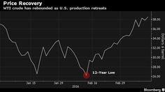 Petrolio, IEA: i prezzi hanno Toccato il Fondo - Materie Prime - Commoditiestrading