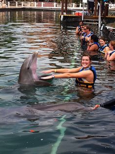Dolphin Discovery Riviera Maya, let's boogie!