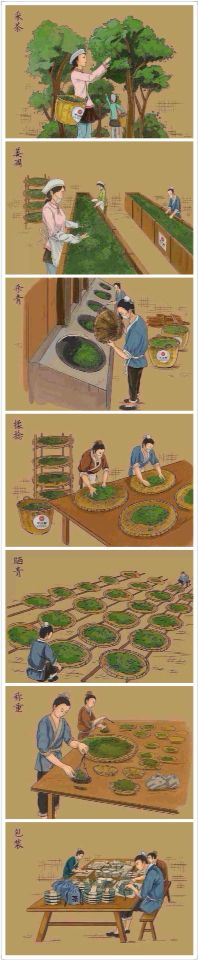 The process of puer tea