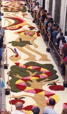Catifes de flors,,Sitges, Garraf  Catalonia