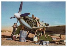 Fitters and armorers hurriedly service a Supermarine Spitfire Mark IX of No. 244 Wing RAF at Lentini West, Sicily, as captioned by the Imperial War Museum, photographed by RAF Flying Officer L. H. Abbott. It may be a new arrival in theater between June and September 1943.