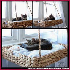 Diy Cat Window Perch Beautiful Dollar Store Crafter Diy Hanging Window Basket Cat Perch Of 23 Elegant Diy Cat Window Perch - 23 Elegant Diy Cat Window Perch Cat Window Perch, Cat House Diy, Diy Cat Tree, Cat Playground, Cat Room, Cat Accessories, Diy Hanging, Hanging Basket, Cat Furniture