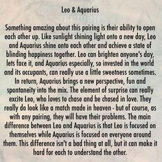 Aquarius girl leo boy