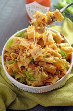 Spicy Caramelized Fennel Rigatoni Carbonara. Tabasco, caramelized fennel, ciabatta breadcrumbs, mozzarella, and a rich, eggy sauce make this pasta one you've got to put on your dinner menu! | hostthetoast.com