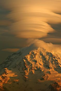 lenticular clouds over the mountain at sunset Seattle Sights, Lenticular Clouds, 7 Continents, Mount Rainier National Park, Washington Usa, Popular Photography, North America, National Parks, Scenery