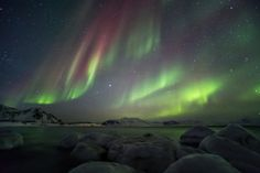 Bustravel Iceland offers the best personal guided tours to the world-famous Northern Lights also known as the Aurora Borealis. View packages and prices. Iceland Northern Lights Tour, Tours In Iceland, Time Travel, Us Travel, Iceland In April, Photography Tours, Natural Phenomena, Aurora Borealis, Hot Springs
