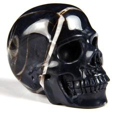 Black Zebra Agate Carved Crystal Skull // I Want this so bad! Crystals And Gemstones, Stones And Crystals, Carved Skulls, Skull Artwork, Crystal Skull, Rocks And Gems, Skull And Bones, Rocks And Minerals, Skeletons