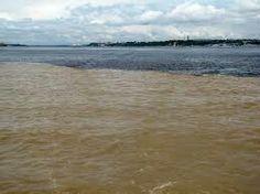 Encontro das águas em Manaus AM