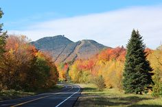 Autumn colors in Vermont are with us again. Despite a late start, the fall foliage arrived around the first week of October, with some stunning colors in Chittenden County. A drive to the Northeast Kingdom was pleasant but seemed to be lacking in the vibrant reds that we've seen a bit further south. One thing's …