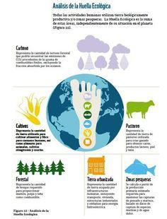 Análisis de la Huella Ecológica