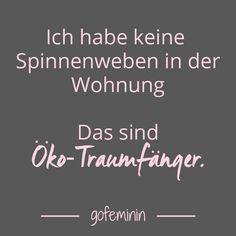 Noch mehr Sprüche für jede Lebenslage: http://www.gofeminin.de/living/album920026/spruch-des-tages-witzige-weisheiten-fur-jeden-tag-0.html#p1
