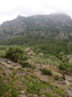Wandern im Tramuntana Gebirge River, Places, Outdoor, Photos, Mountain Range, Hiking, Outdoors, Lugares, Outdoor Games
