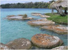 Giant 'Stromatolites' of Laguna Bacalar View these life forms and find out more from Professor Michael Gibson's symposium presentation. Add...
