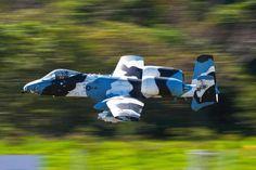 A-10 Thunderbolt II Camo