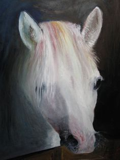 I love this painting!   white horse oils on canvas https://www.facebook.com/debby.fulton/posts/836644129717182:11