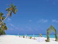 If you are searching for best place to #Travel in #Maldives, you are at right destination. just click on http://www.maldivesexclusive.com