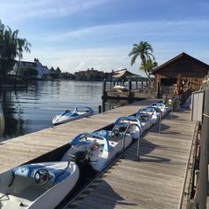 When in Disney, Live like a Polynesian   EXHILARATING MOMENTS