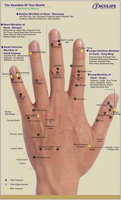 Hand reflexology chart: Aculife (1)