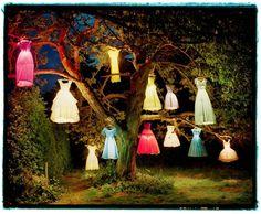 lanterna fashion!