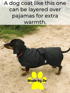 Use fleece pajamas under this coat for extra warmth on cold days. Small Dog Coats, Small Dogs, Weather Change, Fleece Pajamas, Dog Activities, Little Dogs, Cold Day, Dog Care, More Fun