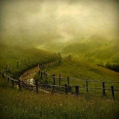 Beautiful, haunting, rural Ireland