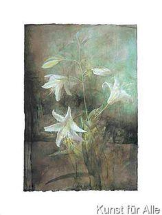 Pedro Cano - Lilies