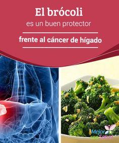 El brócoli es un buen protector frente al cáncer de hígado  La buena fama del brócoli es real y merecida. Este vegetal con aspecto de bonsái y tan polivalente en la cocina encierra grandes beneficios que no podemos descuidar y por los que vale la pena incluirlo en nuestra dieta.