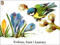 """Krokusy, bazie ikasztany"" - Johanna Kraeger, Ilse Hessler"