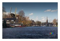 Still no ice on the River Vecht! How long will it take? #weesp awaits (2)