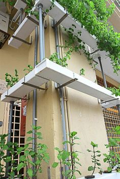 An example of a hydroponic system being used to cover pillars with the flowers and plants.