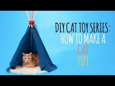 Welcome to the Friskies Do-It-Yourself Toy Maker Series! Watch this video to learn how to build a royal tipi for your kitty cat! You'll need: - 1 rope - 1 bl...