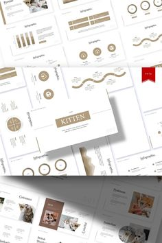 Kitten - PowerPoint Template #93381 Professional Presentation, Business Presentation, Presentation Templates, Business Powerpoint Templates, Keynote Template, Great Presentations, Business Planning, Website Template, Color Schemes